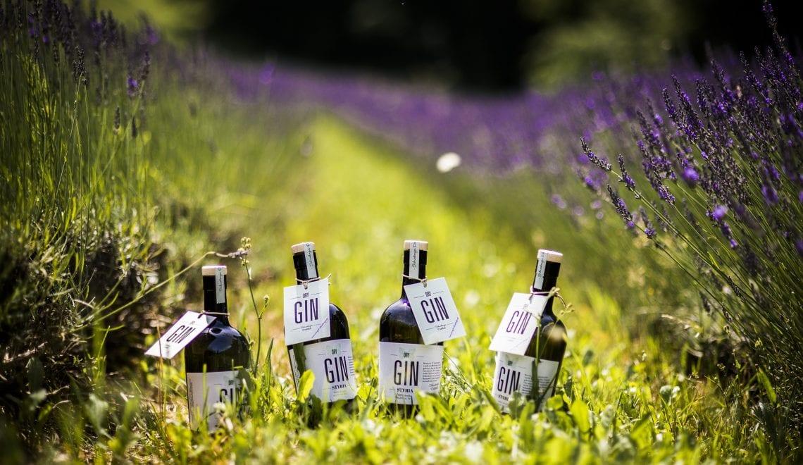 Top 5: Besondere Gins aus der Steiermark
