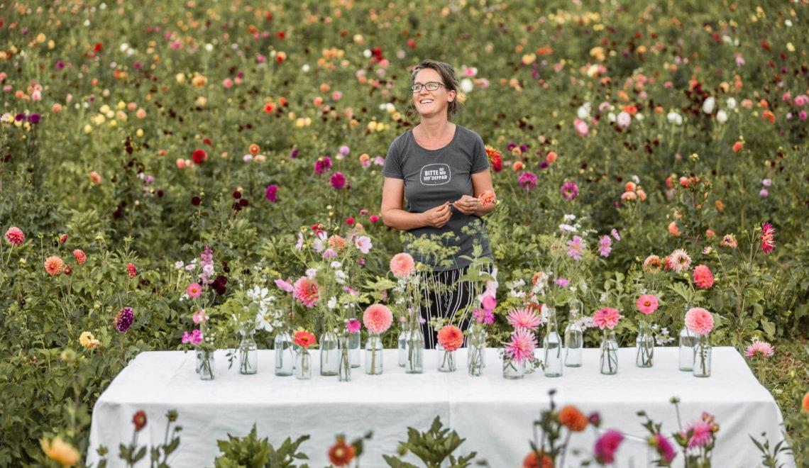 Bio-Blumen-Landwirtschaft zum Erleben