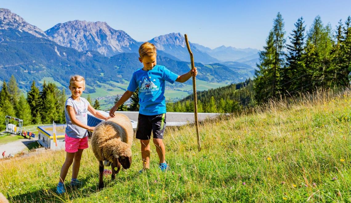 Abenteuer und Genuss am Hauser Kaibling
