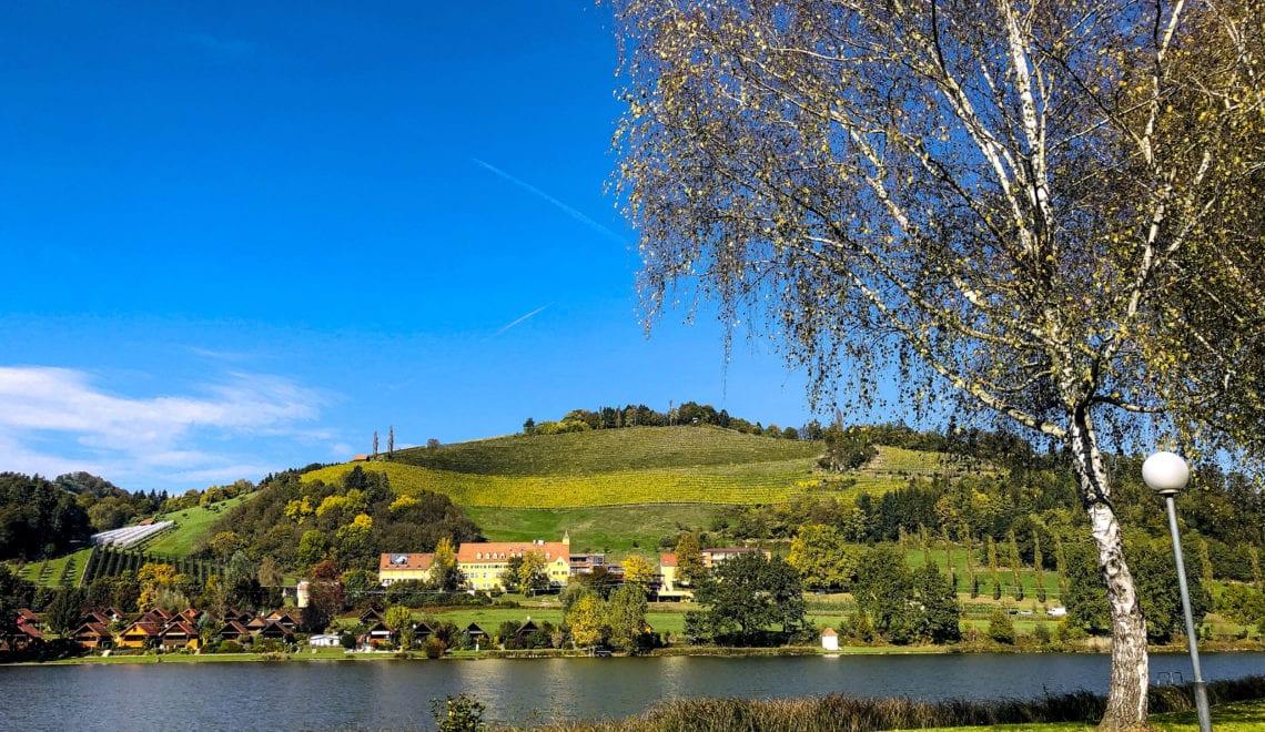 Kennen Sie das steirische Landesweingut Silberberg und seine hervorragenden Weine?