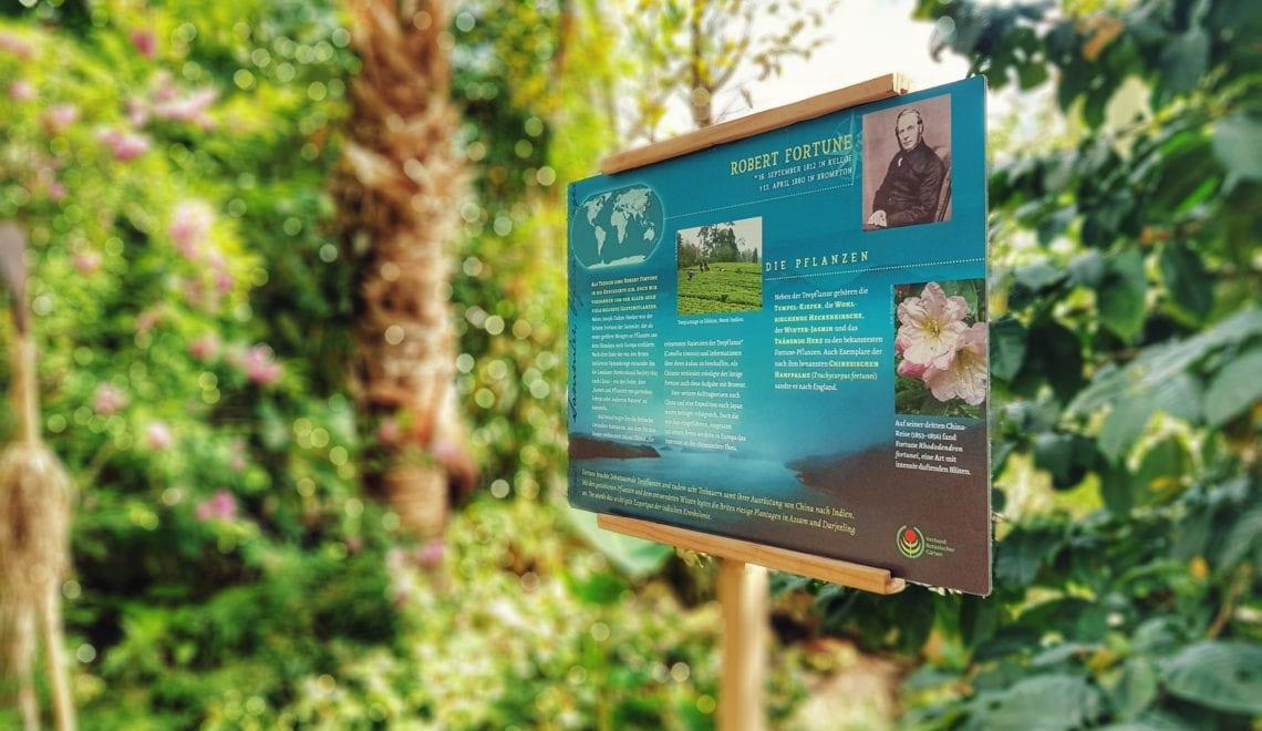 Ein Blick in den Botanischen Garten: Neue Ausstellung und umfassende Grabarbeiten