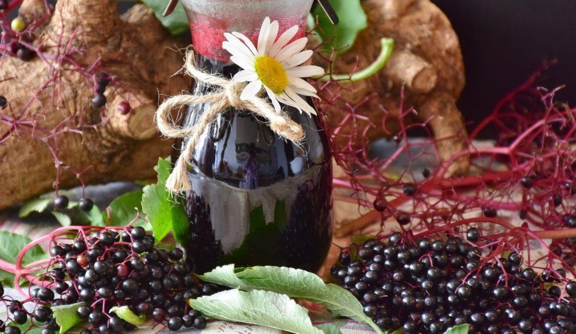 SteierMag-Rezept: Selbstgemachter Holunderwein